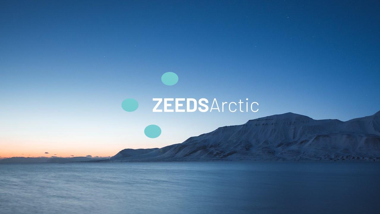 Z-Arctic_logoslides